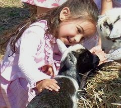 traveling farm petting zoos